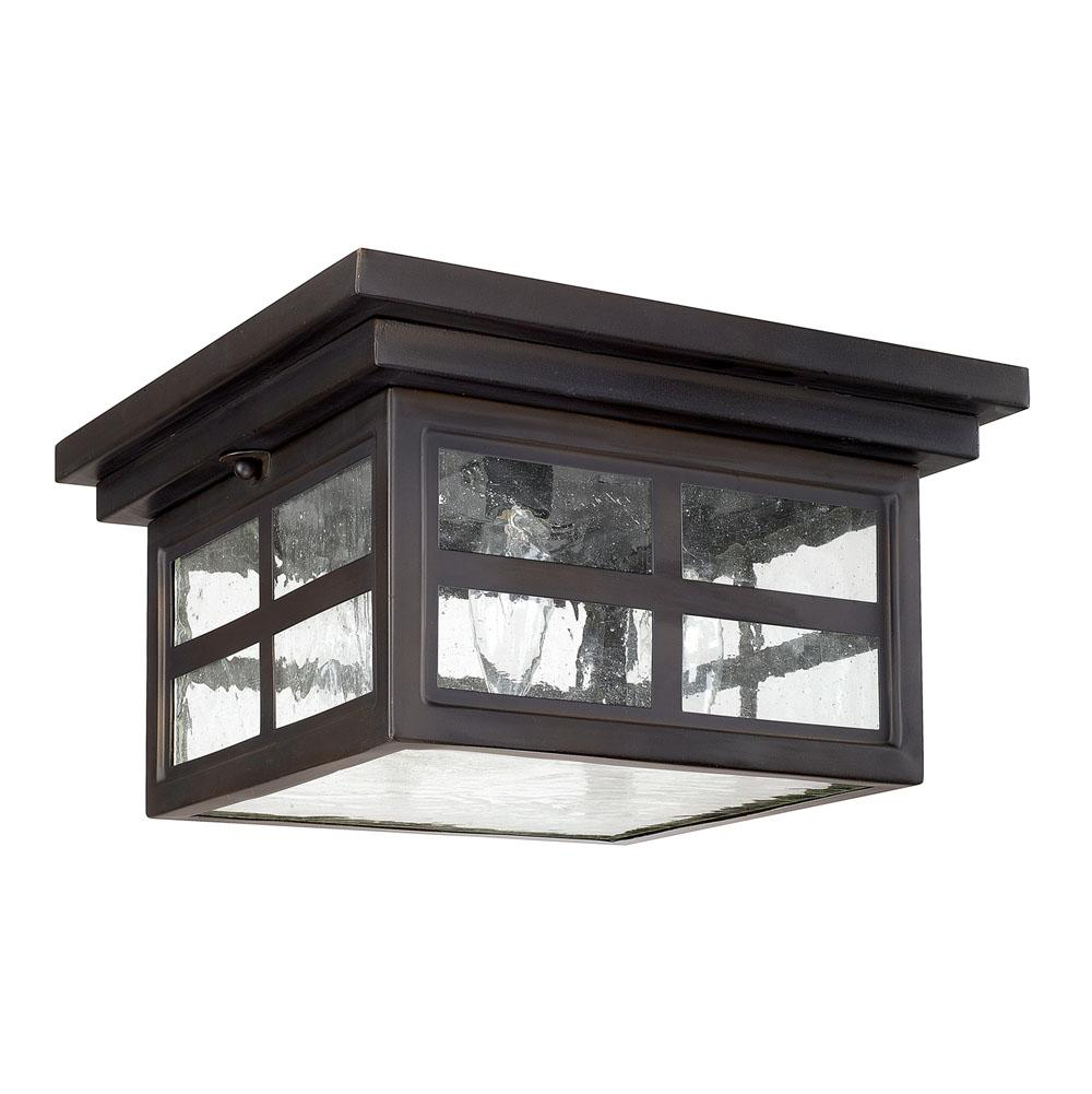 Capital Lighting Ceiling Fixtures Outdoor Lights item 9917OB