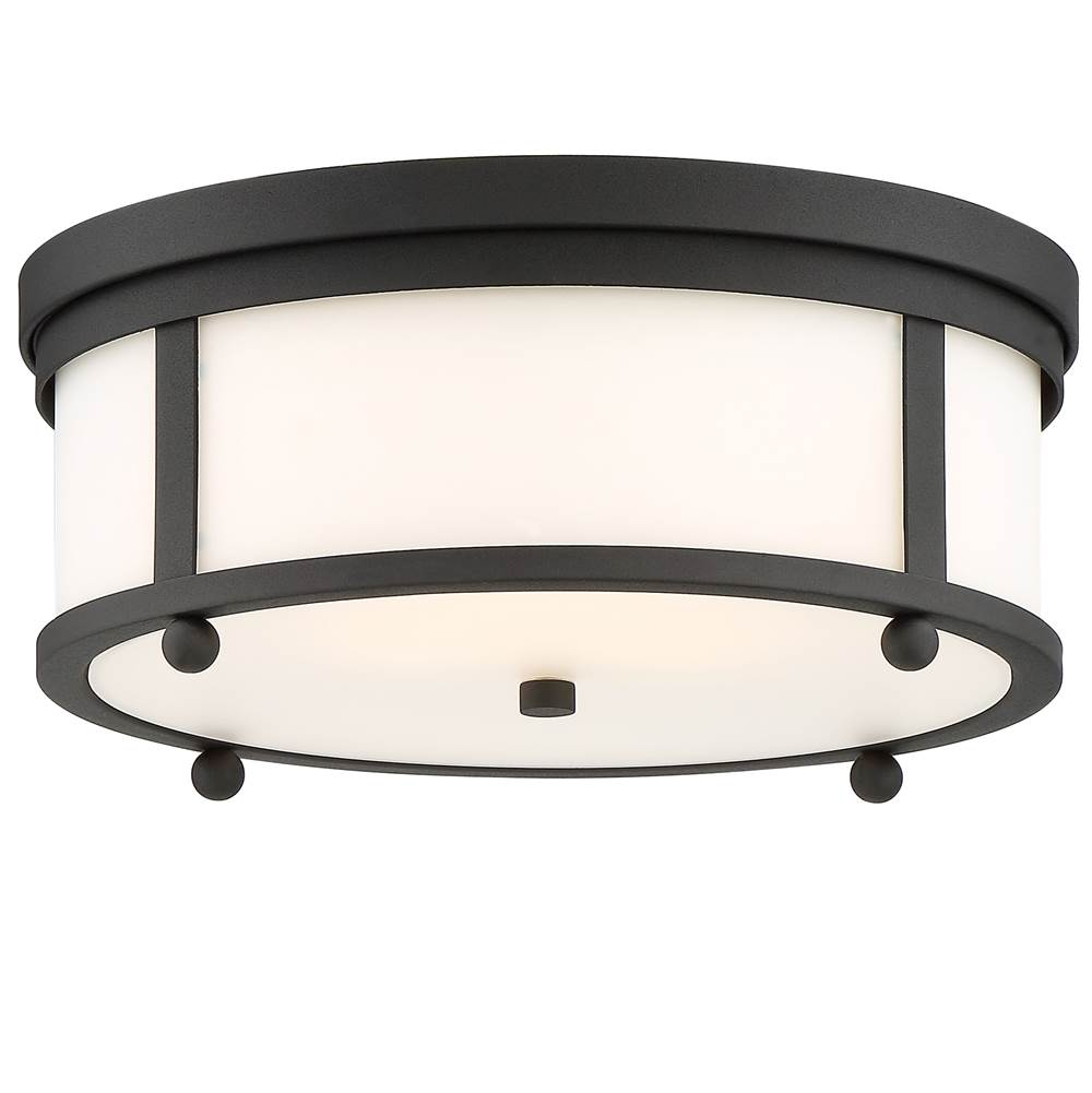 Crystorama Ceiling Fixtures Outdoor Lights item SYL-2283-OP-BF