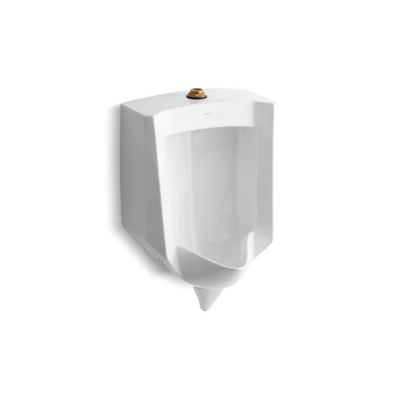 Kohler Wall Mount Urinals item 4972-ET-0